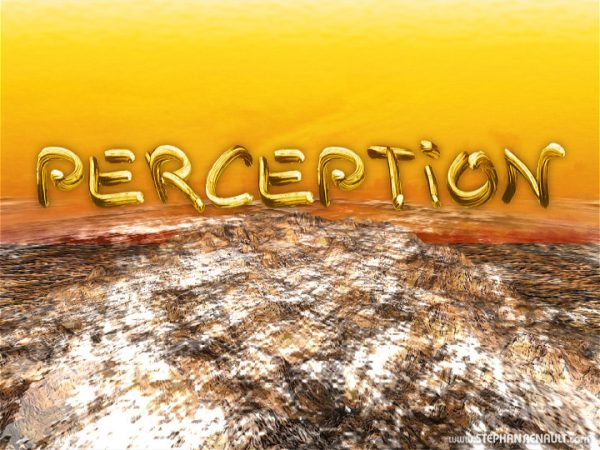 Perception - Stephan Renault
